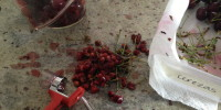 Pitting Party! The OXO Cherry Pitter made life easier. And, it's fun to use.
