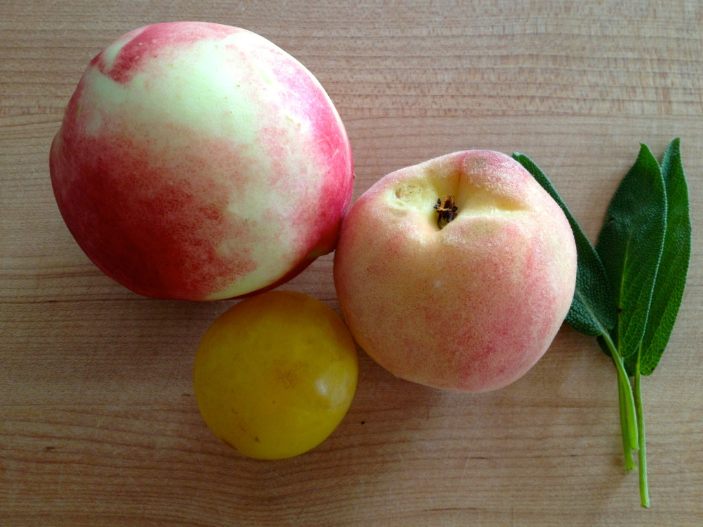 A peach, plum, nectarine and sage ready to be made into Stone Fruit & Sage Puree
