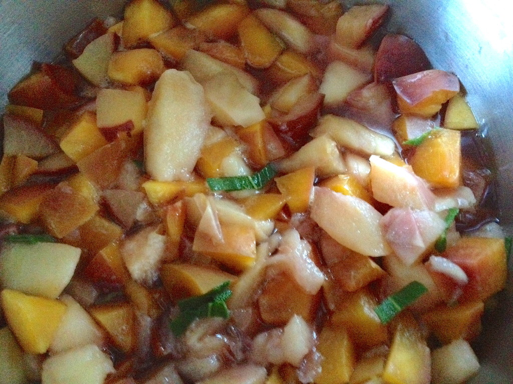 Stone Fruit & Sage cooked down to make into a baby food puree.
