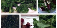 kale the superfood