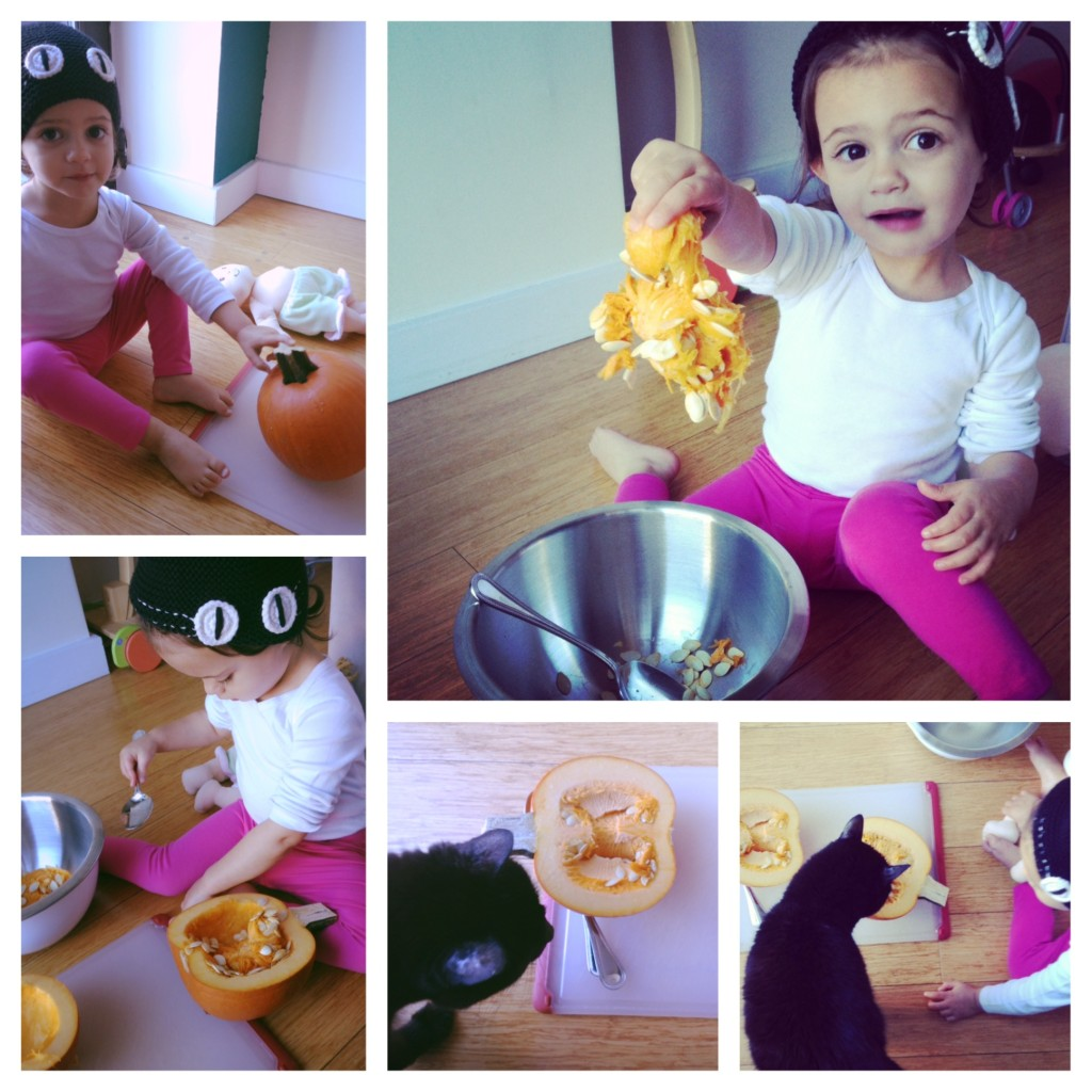Pumpkin fun with a toddler and a kitty!