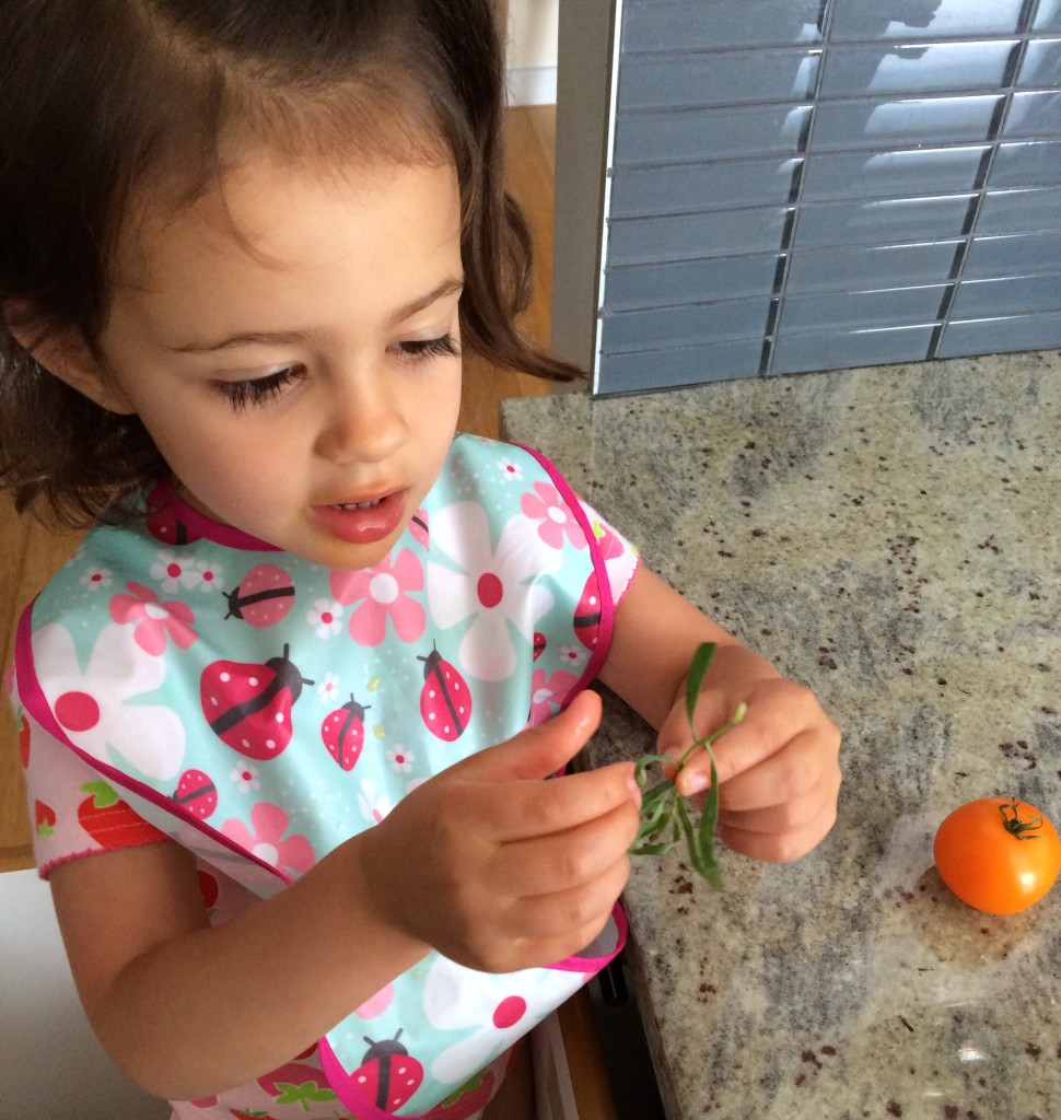 My teeny tiny sous chef also pulls apart tarragon to add to Yellow Squash and Tarragon Purée Pasta from teeny tiny foodie