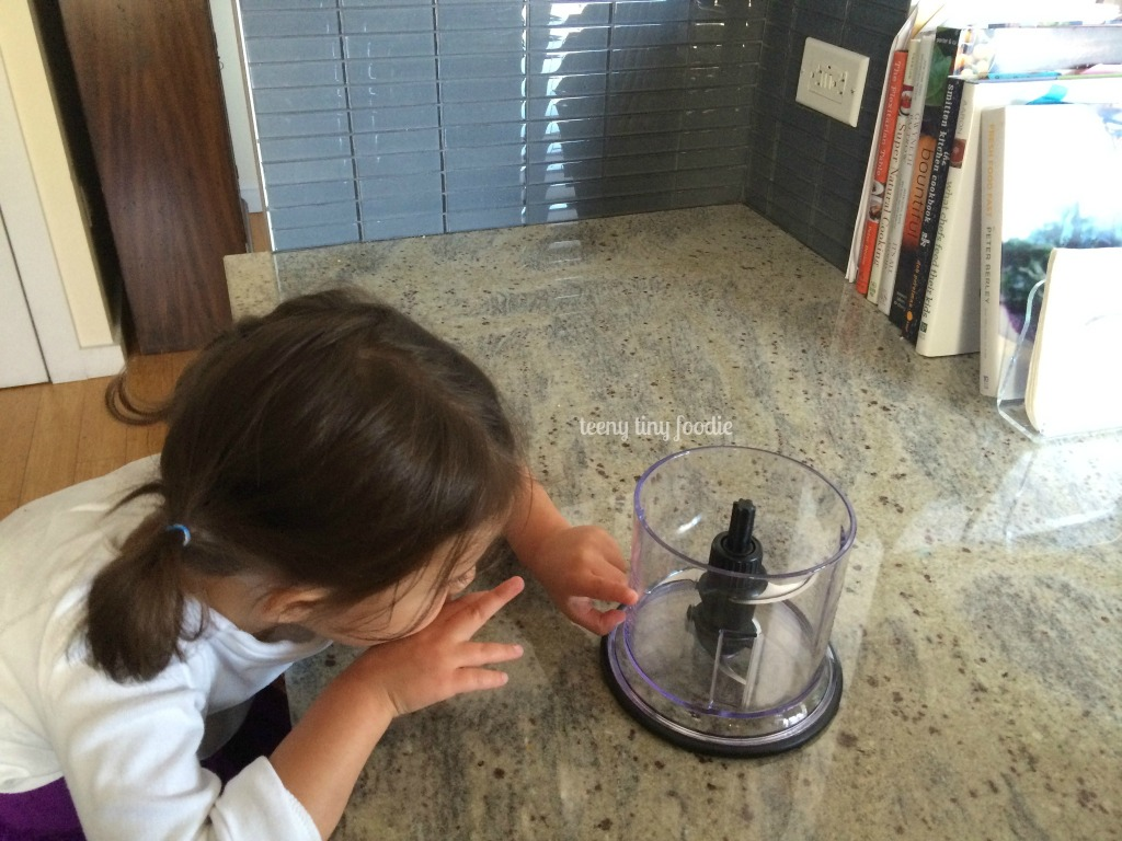 Investigating the mini food processor from teeny tiny foodie